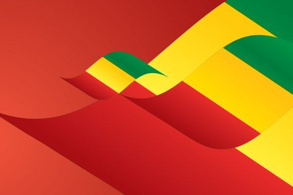 La tenue d'une Assemblée générale élective en Guinée (fin 2019)